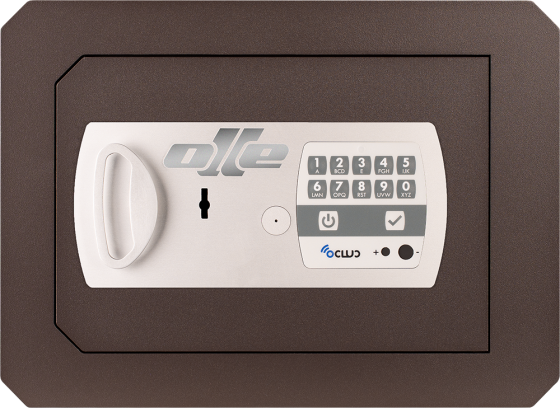 1000 Series - Wall safe - Electronics and lever lock